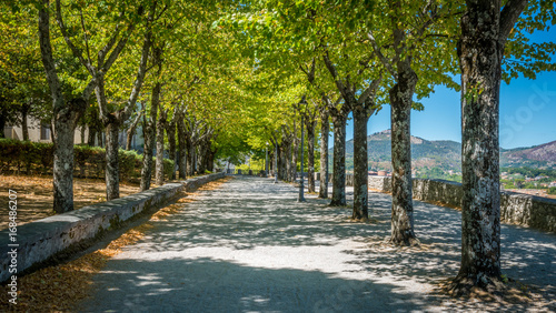 Scenic path in Alatri acropolis, province of Frosinone, Lazio, Central Italy Wallpaper Mural