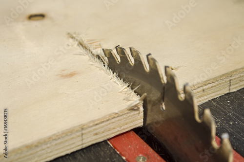 Obraz Zęby tnące i tarcza do cięcia na pile stołowej. - fototapety do salonu