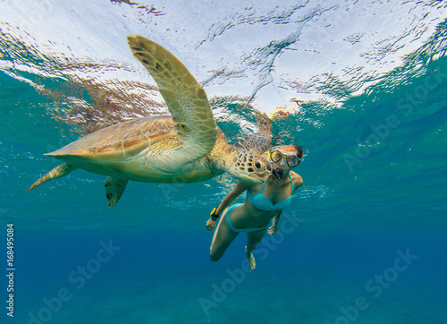 Poster Tortue Snorkeling woman with hawksbill turtle, underwater photography.