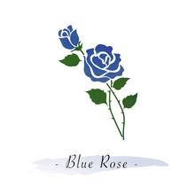 Colorful Watercolor Texture Vector Botanic Garden Flower Blue Rose