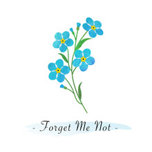 Colorful Watercolor Texture Vector Botanic Garden Flower Light Blue Forget Me Not