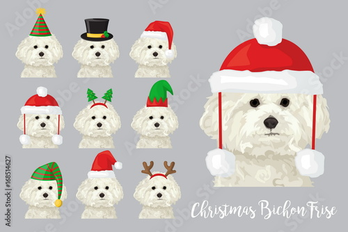 Fényképezés  Christmas festive bichon frise dog wearing celebration hats