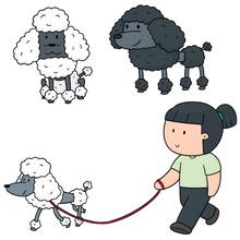 Vector Set Of Poodle