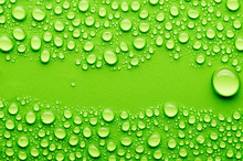 Water Drops On A Green Backgro...