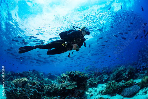 Stickers pour portes Recifs coralliens Scuba diver on coral reef