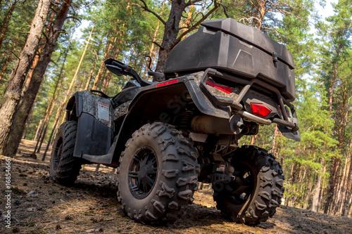 Zdjęcie XXL ATV Quadbike w sosnowym lesie