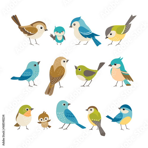 Valokuva  Set of cute little colorful birds isolated on white background