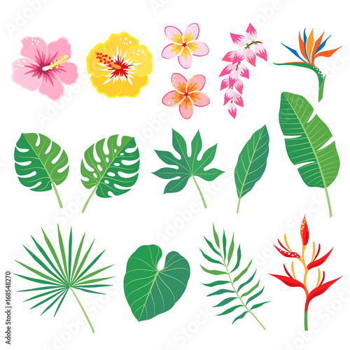Set of tropical leaves and flowers isolated on white background Canvas-taulu