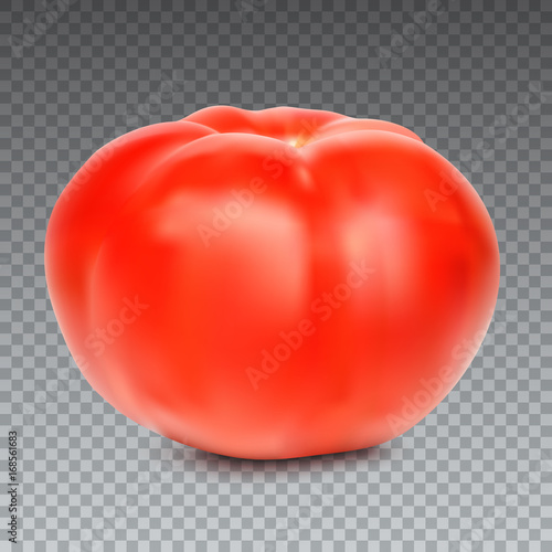 Red whole tomato isolated on a transparent background, close-up. A fresh tomato cut out with the texture and clipping path, vector 3D illustration.