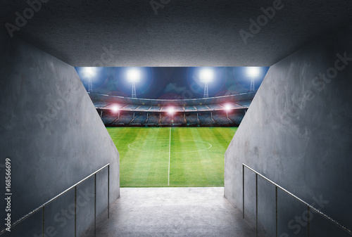 Fotografie, Obraz  tunnel in stadium with green field