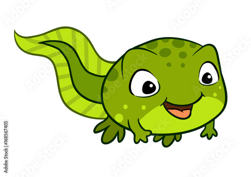 Fotografie, Obraz Vector cartoon illustration of a cute happy tadpole