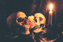 Lover Of Human Skulls And Rose Flower With Light Candle In Dim Valentines On Black Fabric With Texture In Night Time / Still Life Image