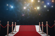 canvas print picture - Red carpet for VIP. Flash lights in background. 3D rendered illustration.