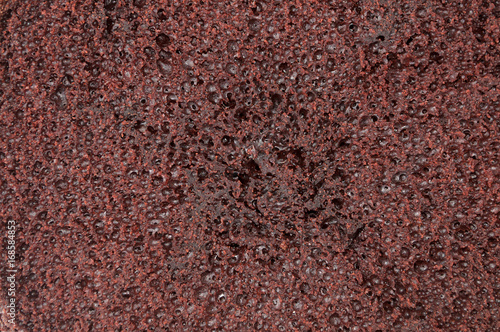 Texture of chocolate sponge cake. Tablou Canvas