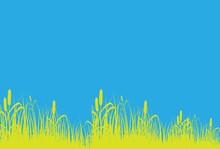 Grass Line Background