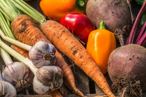 Assortment of fresh vegetables close up. Poster