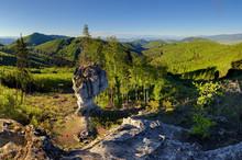 Forest With Big Rock, Budzogan
