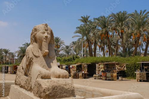 エジプト アラバスター製のスフィンクス  - Alabaster Sphinx of Memphis.  Egypt. Wallpaper Mural