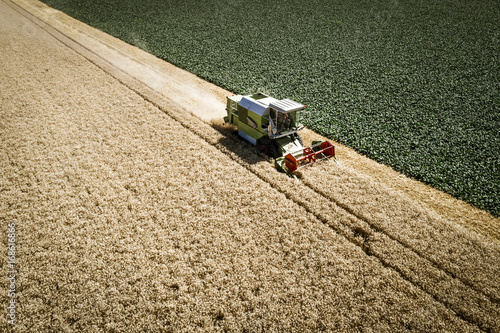 Green combine harvester harvesting wheat on a field in Austria in summer Canvas Print