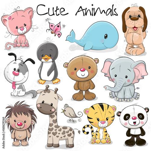 Zestaw cute zwierząt