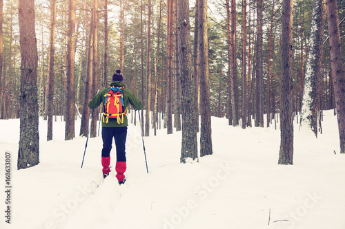 Photo backcountry skier in snowy forest