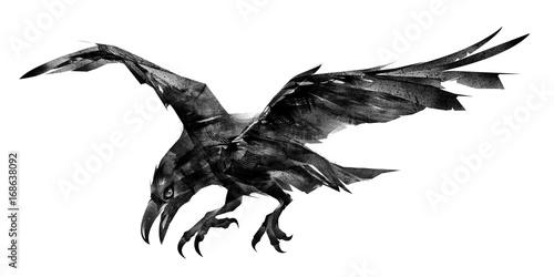 rysunek-czarnego-ptaka-na-bialym-tle