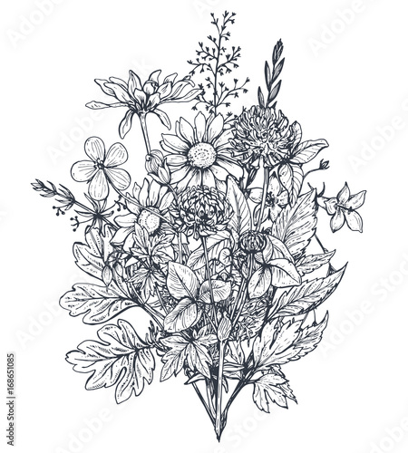 Fototapety, obrazy: Vector floral bouquets with herbs and wildflowers.