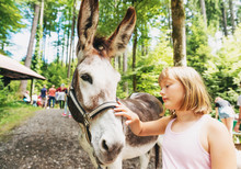 Little Girl Hiking With Donkey...