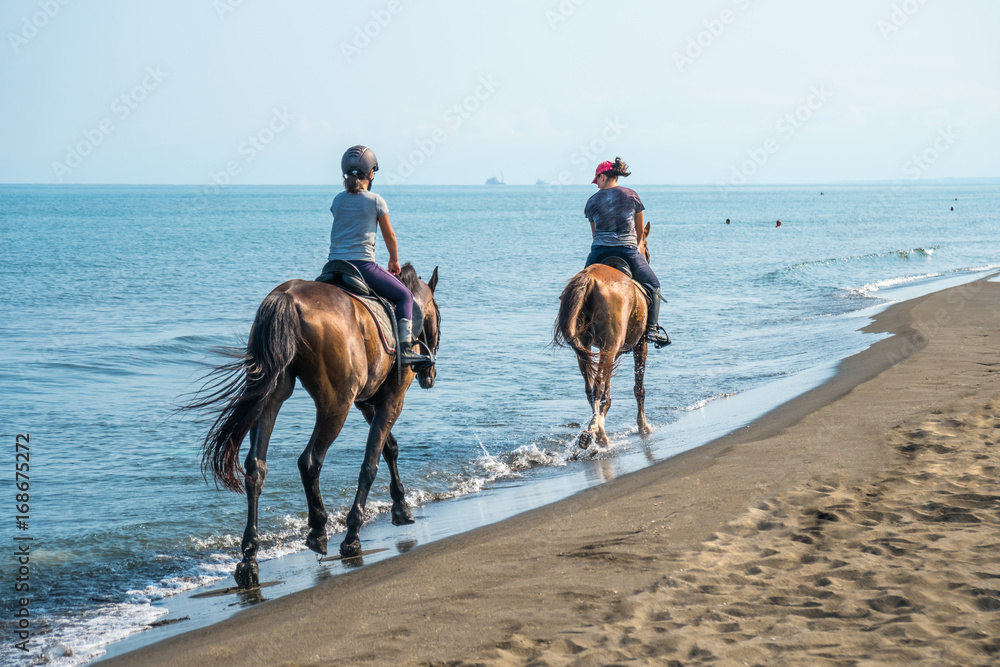 Galloping on a horse of the sea at sunny day.