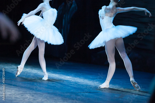 Poster Cygne choreography, art, ballet concept. impeccable bodies of two female ballet dancers are shinning in bright light of projectors, they are raising their hands like beautiful and majestic swans