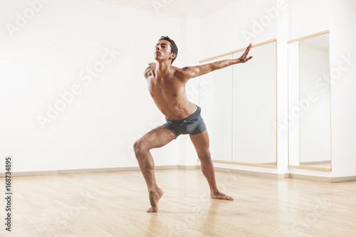 fototapeta na lodówkę young and beautiful professional ballet dancer performing