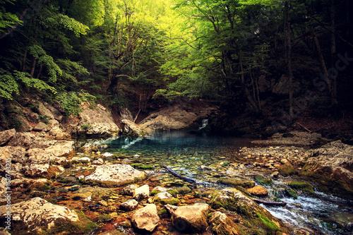 niesamowity-krajobraz-lesny-potok-w-glebi-lasu