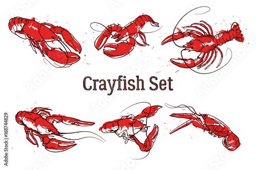 Ręcznie rysowane krewetki lub homary. Tekst ZESTAW CRAYFISH. Szkic wektor grunge zestaw dobre do dekoracji menu pub