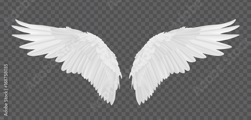 Fototapeta Vector realistic angel wings isolated on transparent background obraz