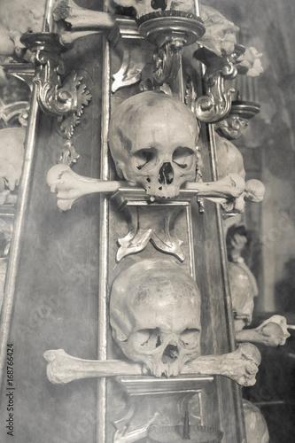 Fotografie, Obraz  Teschi e ossa umane nella nebbia autunnale