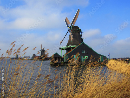 Spoed Foto op Canvas Molens Moinhos de Vento - Holanda