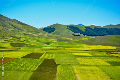 Foto op Aluminium Blauw Panorama of sibillini mountains in spring with the flowering of Castelluccio di Norcia in Umbria Italy