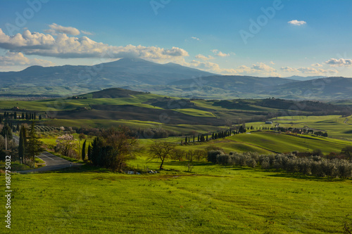 Tuinposter Blauwe jeans Spring landscape in the hills of Tuscany Italy, land of Brunello wine