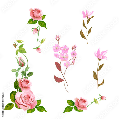 Set of curly branches of red rose and small pink forget me not set of curly branches of red rose and small pink forget me not flowers mightylinksfo