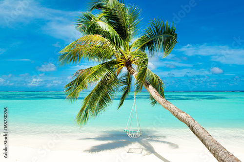 Papiers peints Tropical plage Tropical landscape with swings in the palm tree on the shores of Indian Ocean