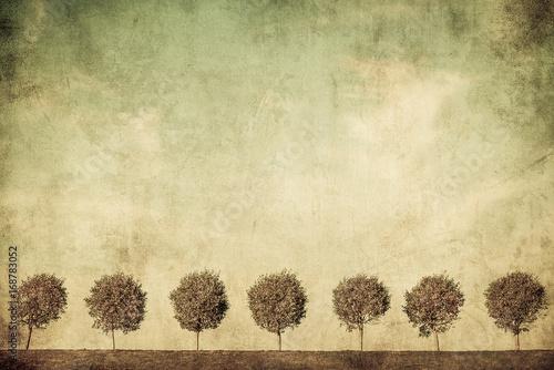 Fotografija  grunge image of trees