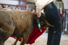 Accident. Matador Woman Fighting In A Typical Spanish Bullfight