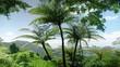 A medium shot tilting down of a palm tree. Jungle.