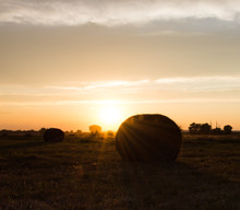 Hay Bales Against The Sunset. A Large Round Bale Is In The Foreground And Tall, Uncut Grass Is Behind. The Sunset Is In The Background.