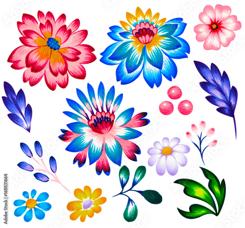 Valokuva  set of folk floral elements, flowers and leaves.