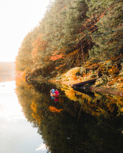 Foliage, Autumn, Trees, Aerial...