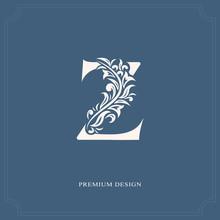 Elegant Letter Z. Graceful Royal Style. Calligraphic Beautiful Logo. Vintage Drawn Emblem For Book Design, Brand Name, Business Card, Restaurant, Boutique, Hotel. Vector Illustration
