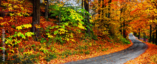 Autumn landscape with bright colorful orange and red trees and leaves along a winding country road. Banner format