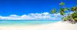 Leinwandbild Motiv Strand Panorama mit Meer und Palmen