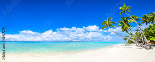 Poster de jardin Tropical plage Strand Panorama mit Meer und Palmen